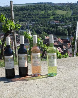 Neues Franken – Spaß mit Wein